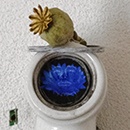 Kathleen Graves - Saint Bot Study - 2012 - Found Objects, Porcelain Plumbing, Archival Print, Bolts, Plants, Fresh and Dried
